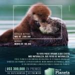 Concurso Internacional de Fotografía Por el Planeta